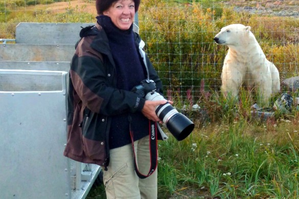 Hiking with polar bears in Canada's Manitoba remains a career highlight
