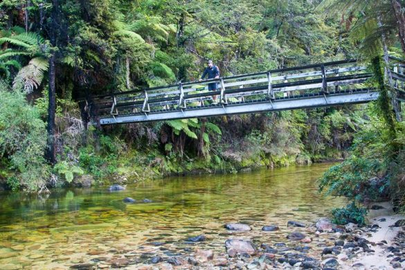 Hike & Ride NZ's Great Taste Trail