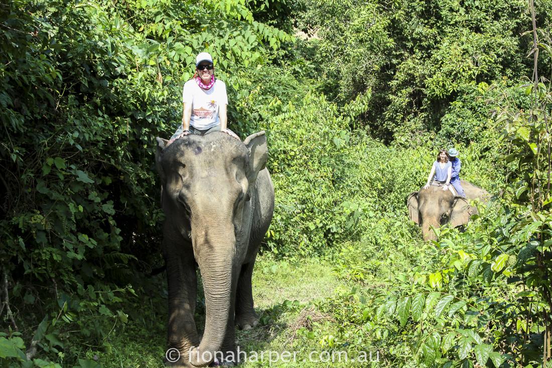 Elephant Village, Luang Prabang half marathon, Laos