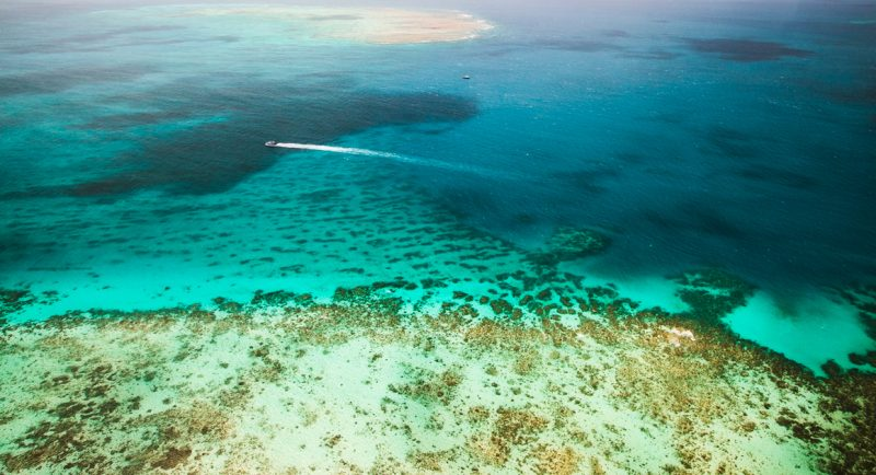 Great Barrier Reef | Travel Boating Lifestyle | Photo TTNQ